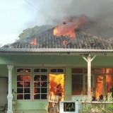 Kondisi rumah korban yang diamuk sijago merah (ist)