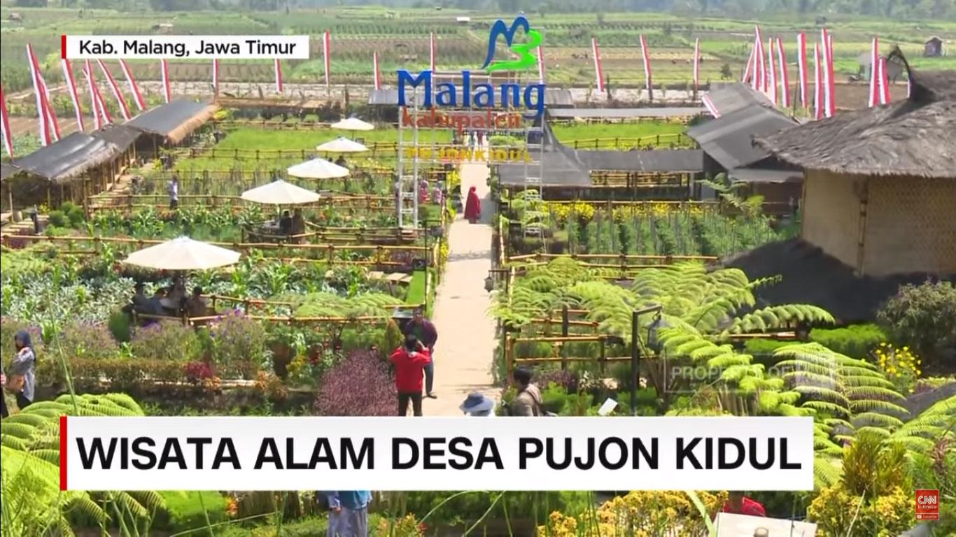 Belasan Daerah Ini Ubah Sawah Jadi Objek Wisata, Kabupaten Malang