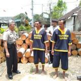 Siono dan Rokim Edi Susanto tersangka pencurian kayu milik perhutani saat diglandang polisi, Kecamatan Donomulyo, Kamis (18/10/2018) (Foto : Istimewa)