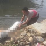 Mayat Siati saat dievakuasi dari saluran irigasi di Desa Putat Lor, Kecamatan Gondanglegi (Foto : PMI Kabupaten Malang for MalangTIMES)