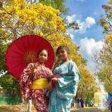 Tiru Jepang, Pemkot Batu Siapkan Rp 2 Miliar untuk Pohon Warna Warni