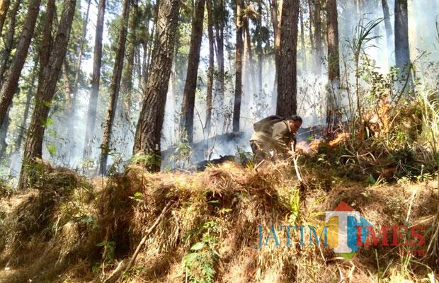Petugas saat memadamkan kebakaran di diPetak 233b RPH Oro-oro Ombo, KPH Pujon, Desa Pesanggrahan, Kota Batu, Selasa(30/10/2018). (Foto: BPBD Kota Batu for MalangTIMES)