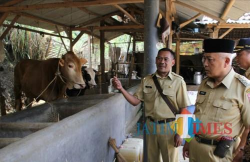 (Dua dari kanan) Wabup Malang HM. Sanusi menyampaikan butuh sentuhan berbeda dengan apa yang selama ini peternak sapi perah lakukan di Jabung, Selasa (30/10/2018). (Humas for MalangTIMES)
