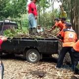 Musim Hujan Datang, Delapan Kecamatan Rawan Tanah Longsor