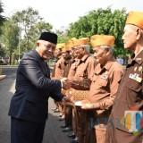 Kabar Gembira, Pemkab Malang Siapkan 10 Ribu Sapi dan Gagasan Budidaya Ikan Lele untuk Para Veteran