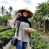 Salah seorang wisatawan tengah memetik strawberry di wisata petik strawberry Kemirigede.(Foto : Team BlitarTIMES)