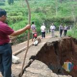 Diguyur Hujan Satu Jam, Jalan Penghubung Desa Longsor