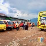 Deretan angkutan Kota Batu yang terparkir di rest area Desa Tulungrejo, Kecamatan Bumiaji. (Foto: Irsya Richa/MalangTIMES)