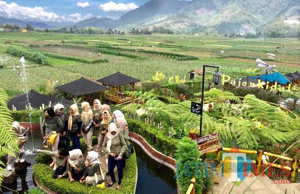 Cafe Sawah Desa Wisata Pujon Kidul Kabupaten Malang (Irsya Richa/Malang Times)