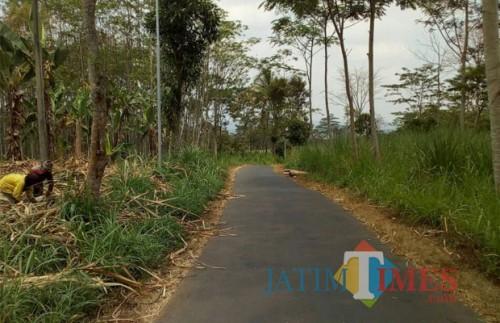 Hasil 'kerja sepi' petugas UPT Dinas PU Bina Marga Kabupaten Malang di jalan desa wilayah Jabung dalam acara Bina Desa (Bina Marga for MalangTIMES)
