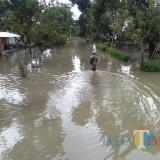 Satu Dusun Dengan 197 KK Di Desa Rowokangkung Tergenang Air