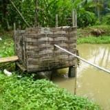 Ilustrasi jamban tidak sehat (foto: Dinkes Kota Malang)