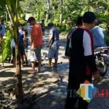Aksi penanaman pohon warga sebagai protes atas jalan rusak di wilayah Kalipare di awal tahun 2018 (dok MalangTIMES)