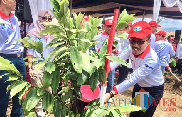 Wakil Wali Kota Batu Punjul Santoso tanam pohon di Desa Tlekung Kecamatan Junrejo, Kamis (6/12/2018). (Foto: Irsya Richa/MalangTIMES)