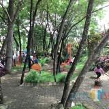 Taman Kodok Ngorek Talangagung, Kepanjen, terus berbenah di musim hujan saat ini (Nana)