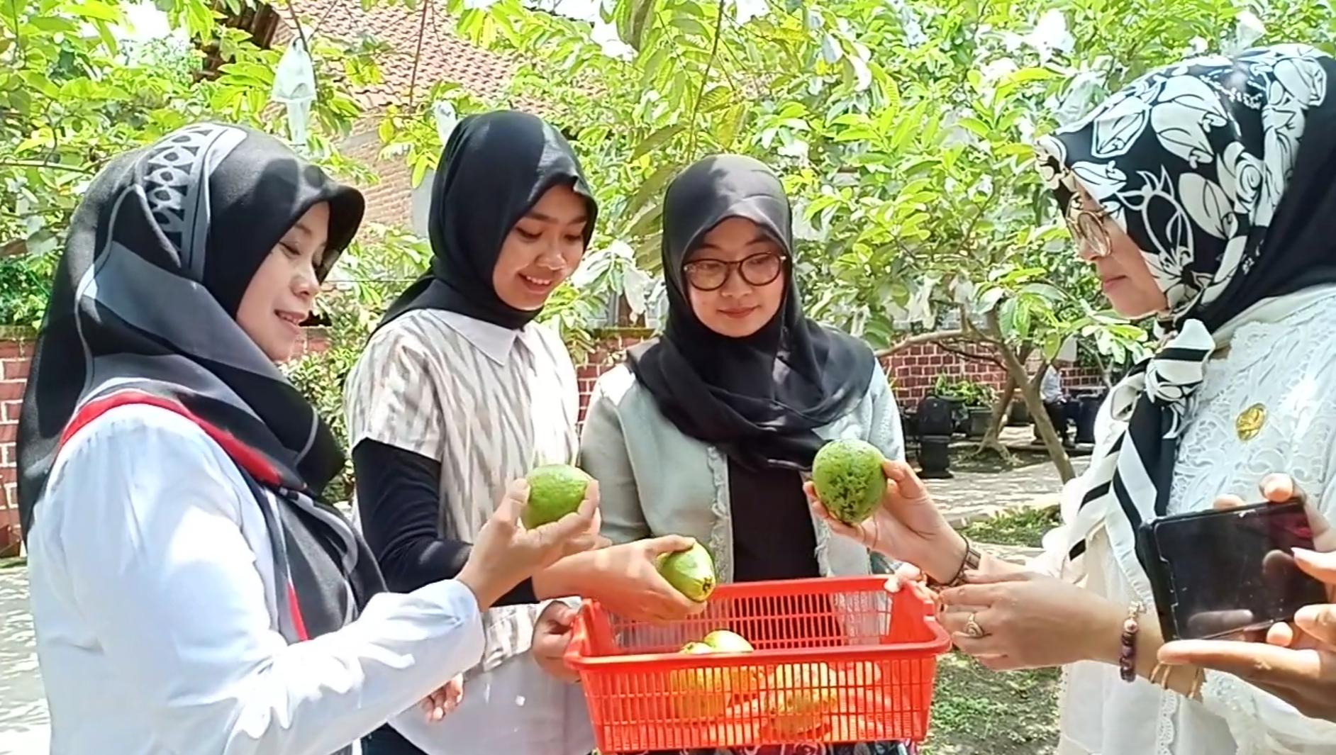 Aktivitas di Kampung Jambu Karangsono.(Ist)