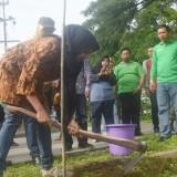 Bunda Fey secara simbolis melakukan penanaman pohon dalam acara workshop olah sampah rumah tangga. (Foto: Ist)
