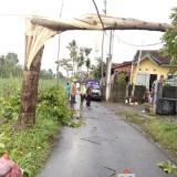 Ilustrasi bencana angin puting beliung yang melanda di beberapa titik yang ada di Kabupaten Malang (Foto : Dokumen MalangTIMES)