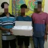 Tersangka Alex Setiyawan, Satria Ilham Alamsyah, dan AP  beserta barang bukti 15 ribu pil trex