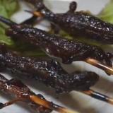 Makanan-makanan aneh dari Jepang. Salah satunya sate kadal. (Daftarpopuler)
