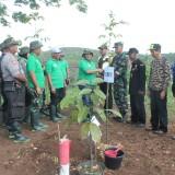 Bupati Blitar Rijanto memimpin penanaman pohon di Hutan Perhutani Serang.(Foto : Team BlitarTIMES)