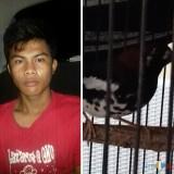 Firman Andrianto tersangka beserta barang bukti pencurian saat diamankan polisi, Kecamatan Bululawang (Polsek Bululawang for MalangTIMES)