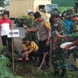 Situasi penanaman pohon di jalur pantura Situbondo (Foto: Heru Hartanto / SitubondoTIMES)