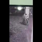 Pelaku yang terekam CCTV mencuri Sepeda (Anggara Sudiongko/MalangTIMES)