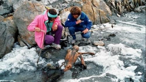 Mumi otzi yang mengutuk para arkeolog (tribunews)