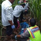 Petugas kepolisian beserta perangkat desa dan dibantu warga saat mengevakuasi jenazah korban, Kecamatan Gondanglegi (Foto : Polsek Gondanglegi for MalangTIMES)