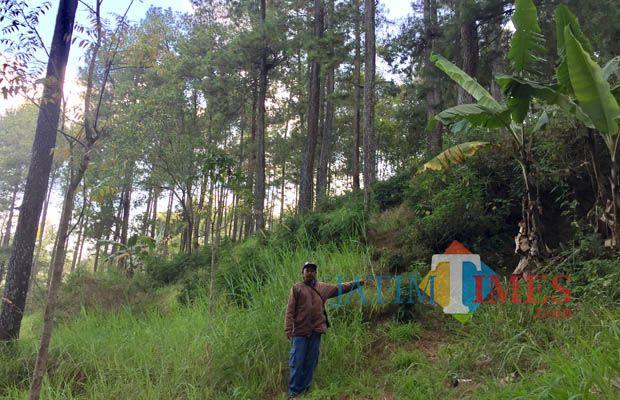 Hariyoto, koordinator juri pelihara wilayah Malang Raya, sedang menunjukkan area gua bunker Jepang di hutan Torong, Dusun Songgoriti, Kelurahan Songgokerto, Kecamatan Batu. (Foto: Irsya Richa/BatuTIMES)