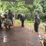 Petugas gabungan saat meninjau lokasi kematian belasan rusa di penangkaran, Kecamatan Jabung (Foto : Istimewa)