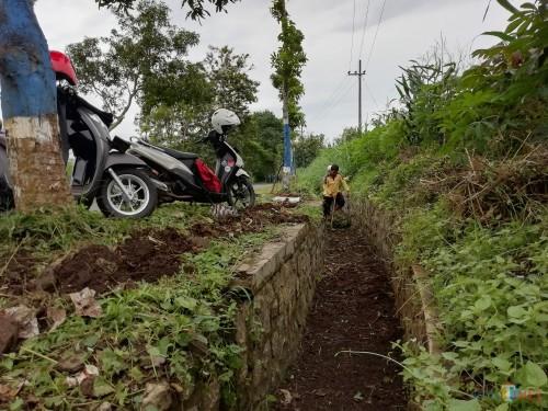 Salah satu petugas pemelihara jalan saat membersihkan parit pinggir jalan, Rabu (23/01) (Nana)