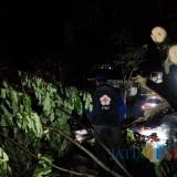 Lagi, Diterjang Angin Kencang, Rumah Warga Roboh Tertimpa Pohon Tumbang