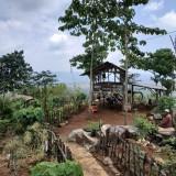 Keindahan Agrowisaya Murbey di Ciamis Jawa Barat