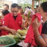 Sekjend PDI Perjuangan didamping caleg Dapil II Blusukan ke Pasar Panji (Foto Heru Hartanto/Situbondo TIMES)