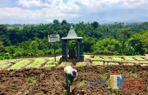 Arca Ganesha letaknya berada di tengah persawahan milik Rewang di Dusun Klerek, Desa Torongrejo, Kecamatan Junrejo. (Foto: Irsya Richa/BatuTIMES)