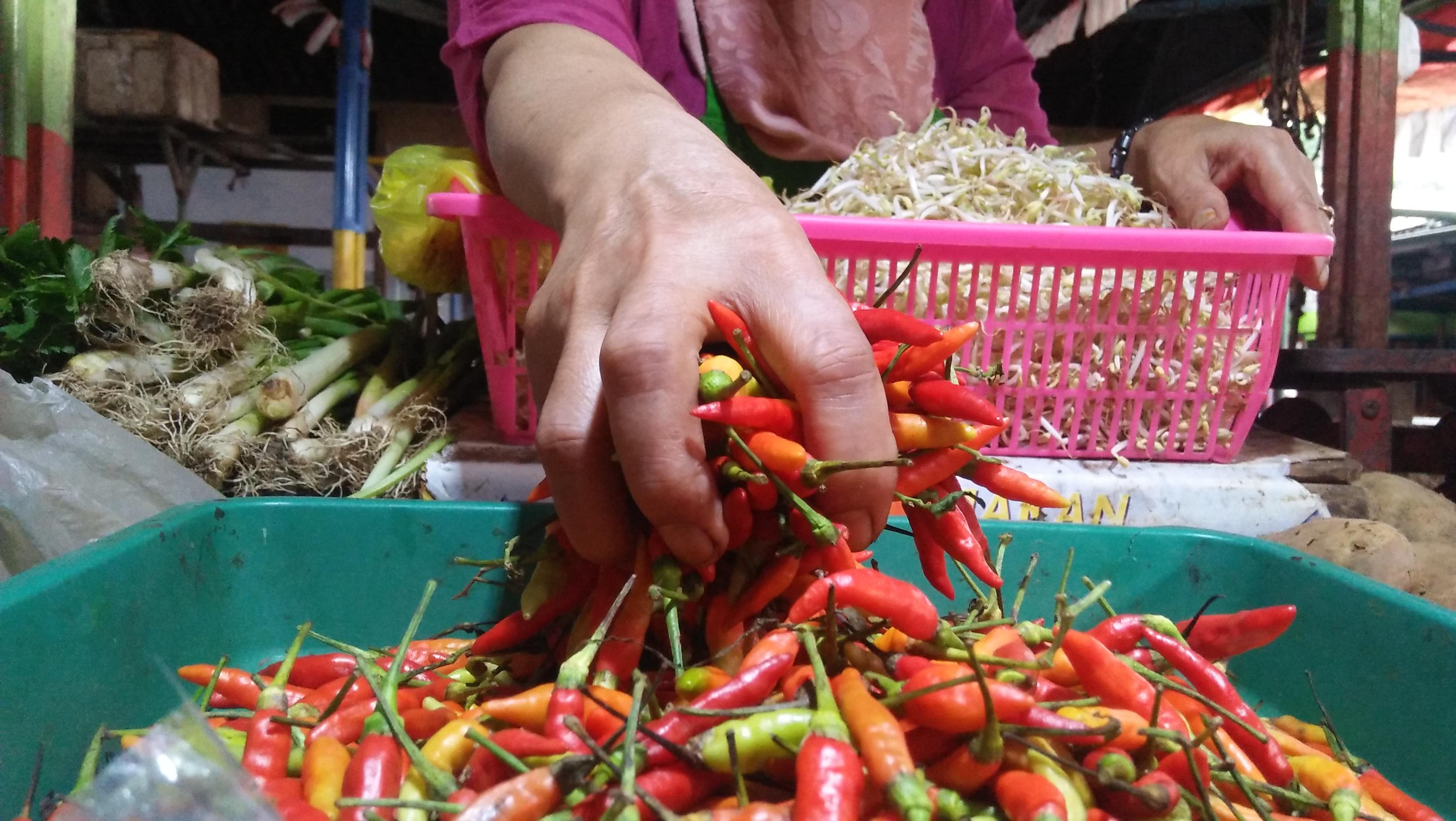 Cabai rawit milik ulfa, pedagang pasar belimbing