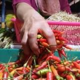 Kualitas Menurun, Harga Cabai Rawit di Malang Ikut Anjlok