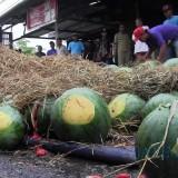 Semangka yang berhamburan akibat kecelakaan truk. (Foto: Istimewa)