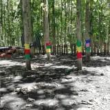 Potensi desa wisata adventure The Jaten Park, Ngebruk, yang membutuhkan sinergitas pemda dan warganya (foto: Nana/ MalangTIMES)