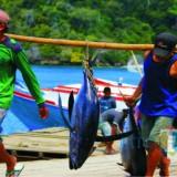 Tunjang sektor pariwisata, Dinas Perikanan Kabupaten Malang bersiap rencanakan penambahan TPI di wisata pantai malang selatan (dok MalangTIMES)