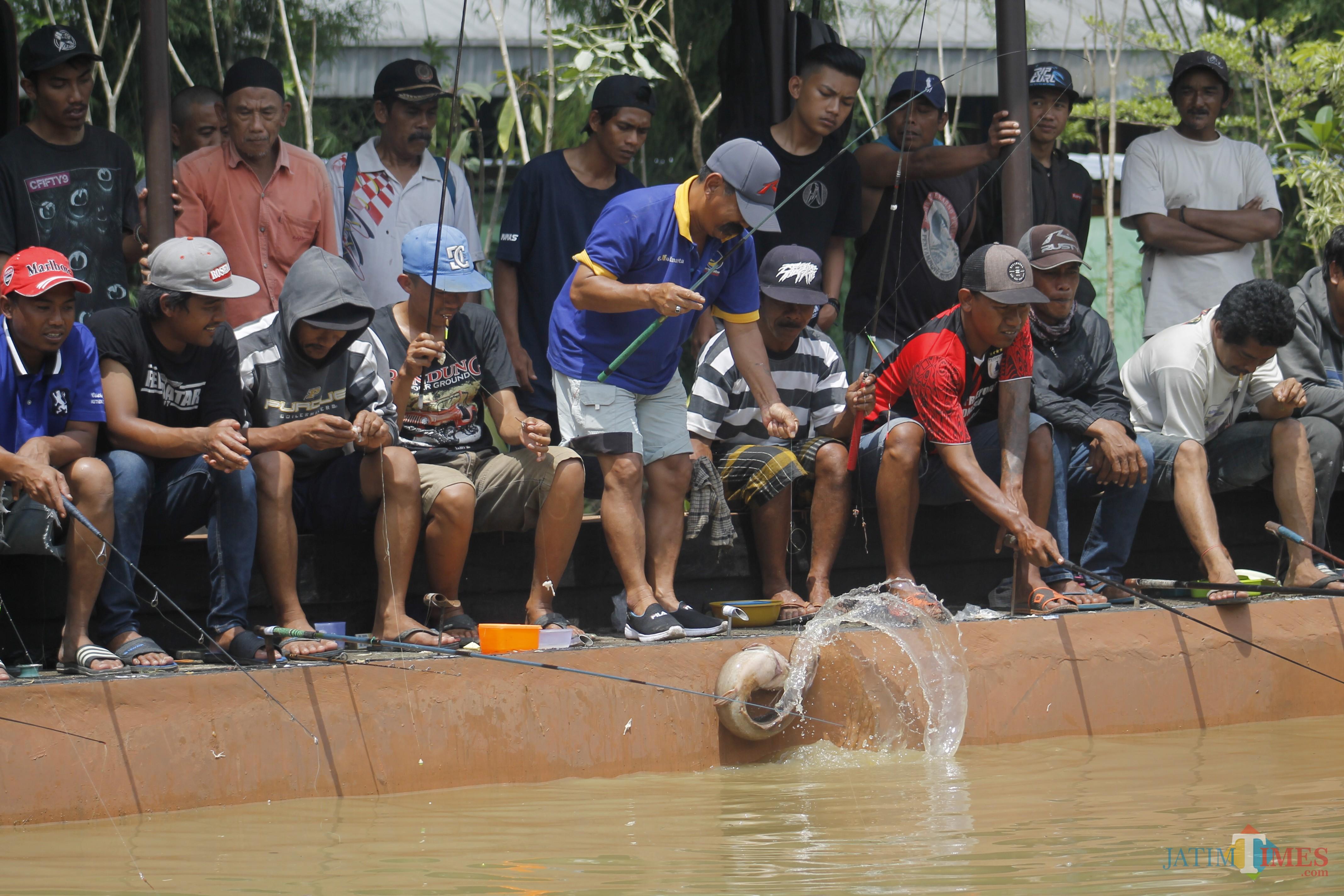 peserta megnangkat lele hasil pancingan yang berukuran sebesar betis orang dewasa ( Luqmanul Hakim/Malang Times)