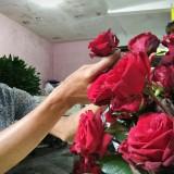 Penjual bunga potong di Pasar Bunga Splendid Kota Malang tengah menata mawar segar di lapaknya. (Foto: Nurlayla Ratri/MalangTIMES)