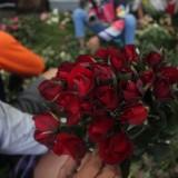 Momen Valentine, Permintaan Bunga Mawar Turun 40 Persen dari Tahun Lalu