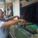 Kepala KPLP Lapas Banyuwangi menenggelamkan HP hasil razia ke dalam aquarium