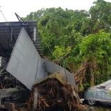 Lokasi warung PKL yang terdampak pohon tumbang di Jalan Gajahmada, Kota Malang. (Foto: Istimewa)