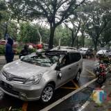 Mobil yang tertimpa pohon trembesi di Jalan Bandung. (Hendra Saputra)
