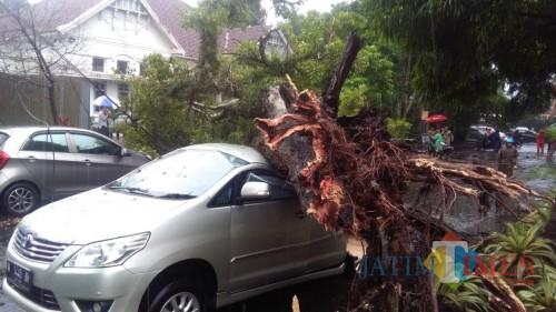 Salah satu lokasi kejadian pohon tumbang yang menimpa kendaraan warga di Kota Malang. (Foto: Istimewa)