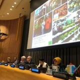 Wali Kota Risma saat jadi pembicara di forum PBB